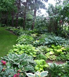 Backyard Garden Flowers Tips backyard garden pool suits.Backyard Garden Landscape How To Make. Landscape Design, Garden Design, Landscape Plans, The Secret Garden, Shade Garden Plants, Hosta Plants, Cacti Garden, Woodland Garden, Front Yard Landscaping