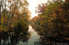 Red Cedar River - Michigan State University, East Lansing, MI