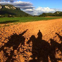 Horse tour in Vinales Valley! Amazing! #horses #vinales #cuba #mogotes #pinardelrio
