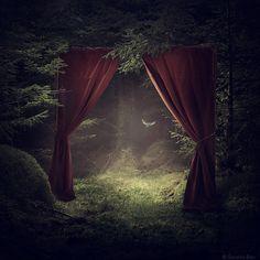 #fairy #tale #enchantedforest