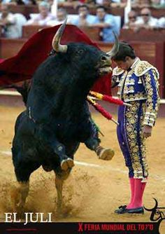 El Juli. I hated seeing the bulls tortured to death!