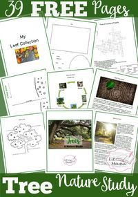 Free Tree Nature Study Printable for Story Time: Because of an Acorn - Crafts and activities for the picture book