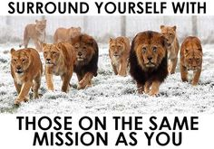 surround yourself with people who are on the same mission as you success