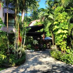 Click photo to read my blog post on Krabi, Thailand. The lush greenery at Aonang Princeville Resort that greeted us effectively buffered away the noise and dust from the main road.