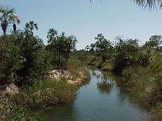 """O cenário tão bem descrito por Guimarães Rosa no romance modernista """"Grande Sertão Veredas"""", pode ser conhecido em seus encantos e mistérios no Parque Nacional que atende pelo mesmo nome da obra. Confira!"""