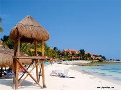 #playadelcarmen #playacar #caribe #sol #playa #vintage #mar #party #mexico #caraibi #ff #rivieramaya #bedandbreakfast #messico #vacaciones #vacanze #facebook #playa #spiaggia #love #beach #instagood #me #cute #follow #like #followme #summer www.playavintage.com