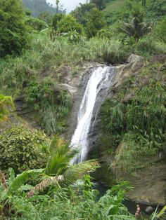Take a Princess Caribbean Cruise to see cascading waterfalls: #vacation #nature #adventure Visit transatlantic.travel or contact Eileen Schlichting to learn more!