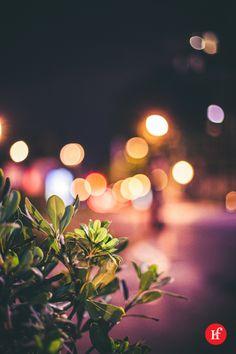 2013-09-10 Retiro Nocturno Viniendo de una reunión esta noche me he parado cerca del retiro a hacer la foto del día y a pesar de que tenía varias fotos del Retiro Nocturno me quedo con esta rollo bokeh y no por el bohek, sino por el tono de color con el que ha quedado al final. Las luces de la ciudad dan mucho juego aunque el motivo sólo sea un simple seto al lado del retiro…