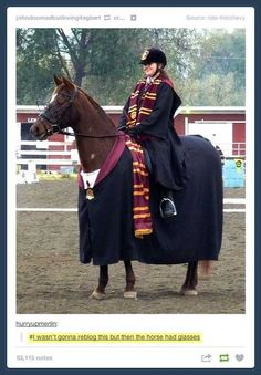 harry potter tumblr-horse, girl, gryffindor, glasses, tumblr, smosh, horse, scarve, helmet, brown, red, fandom, book, film, movie, horseriding, funny, hogwarts uniform, OMG THE HORSE HAS GLASSES!