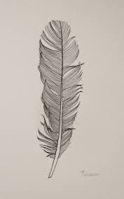 drawn feathers - Google Search