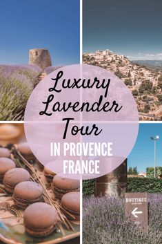 Looking for the best lavender tour of Provence? Look no further than this luxury lavender tour to Chateau du Bois in Provence, France.