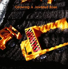 Play in the Mud- The Set Up ~ Growing A Jeweled Rose
