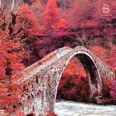 Ayder, Rize, Turkey