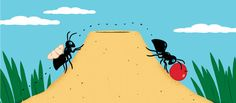 Ants Change Job Duties as They Age - NYTimes.com