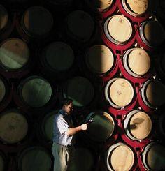 Tips Rueda en Toro! Rondreizen & Specials | Wijnrondreis door Noord Spanje | Cazebonne