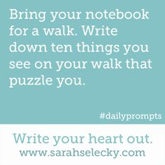 Bring your notebook for a walk.  Write down ten things you see on your walk that puzzle you.