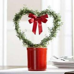 Cute heart topiary