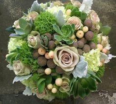Beautiful selection of botanicals