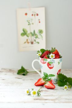 Minty House, strawberries, Cath Kidson