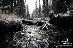 Ylläs. Photo by Jani Kärppä/ Lappikuva. #filmlapland #arcticshooting #finlandlapland