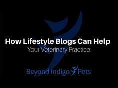 "#Veterinary #Marketing Webinar: Join Beyond Indigo's #blogging manager Kate Matthews for a 30 minute webinar on how #lifestyle and ""light content"" blogs can help establish your #veterinary practice as an industry leader within your community."