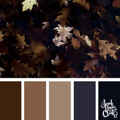 Dark Autumn color scheme | Click for more fall color combinations, mood boards and seasonal color palettes at http://sarahrenaeclark.com #color #colorscheme #colorpalette