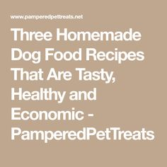Three Homemade Dog Food Recipes That Are Tasty, Healthy and Economic - PamperedPetTreats