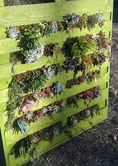 4. DIY Planters - 7 Amazing Ways to Recycle Wood Pallets ... → DIY