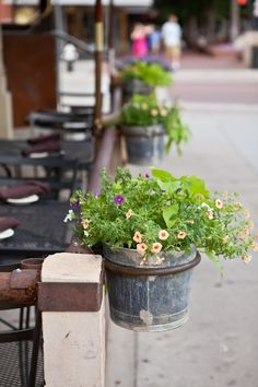 simple buckets of blooms