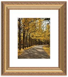 """11"""" x 14"""" Traditional Photography Prints / Wall Décor Landscape Photograph: Fall Path, Autumn Yellow Color. View all of the stunning Landscape Photos by Nature and Landscape Photographer Melissa Fague at:  https://www.etsy.com/shop/PIPAFineart Limited Edition Fine Art landscape photography prints and canvas wraps are also available in a variety of sizes."""