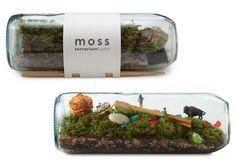 Moss%20Bottle