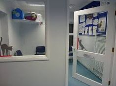 Image result for cat waiting room vets