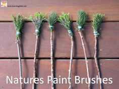 Creating art and Textured Painting with Natures Paint Brushes. What other every day objects can you make with things you find outdoors?