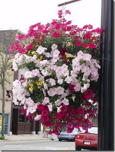 I LOVE hanging flower baskets. My parents grow amazing baskets each summer. This is a great how to.