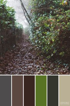 Take a walk with me (When Calls the Heart) Create Color Palette, Neutral Colour Palette, Colour Schemes, Color Combinations, Web Colors, Scenery Pictures, Design Seeds, Color Swatches, Color Pallets