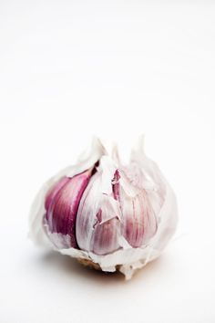 Garlic by Araceli Paz Food Photography Styling, Food Styling, Product Photography, Photography Ideas, Fruit And Veg, Fruits And Vegetables, Veggies, Garlic Festival, Still Life Photos