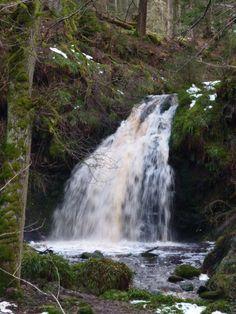 Kielder, Water & Forest Park, Northumberland....stunning!