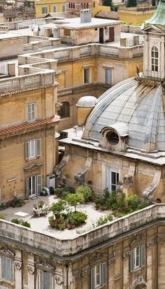 Parisian Rooftop Garden.