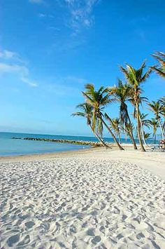 Key West, FL - This picture was taken on Ft. Zachary's beach; I've spent a lot of time in this exact spot sunning, snorkeling and such.  It's by far the best beach in Key West!