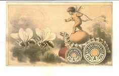 Fantasy Advertising Trade Card Belding Bro Silk Thread Silk Worm Bees Cherub
