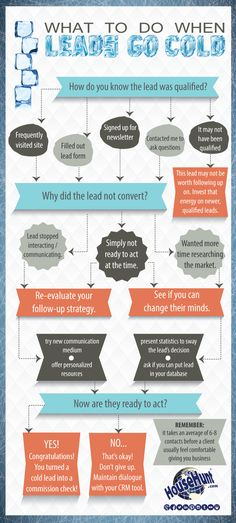 Strategies for Reconnecting with Cold #Leads #Infographic