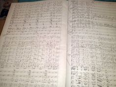 Non potremo mai sapere come sarebbe stata la musica che il Sassaroli, nel suo guanto di sfida a Giuseppe Verdi, lanciò tramite l' editore Ricordi nel lontano ottocento quale sfida per ricomporre l' Aida verdiana Osservando il manoscritto autografo nella...