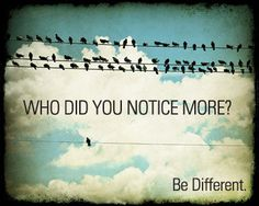 Be that bird.