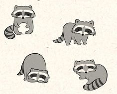 Raccoon Pattern by Laís Shiraishi, via Behance