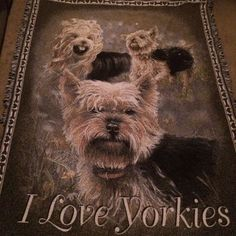 I Love Yorkies Throw Blanket Wall Hanging Yorkshire Dogs Terrier Danburry Mint