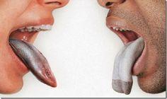 Elimine o mau hálito: depois de saber disto, você esquecerá as balas de menta! | Cura pela Natureza