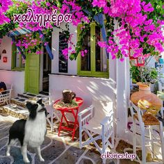 Simple in its morning beauty, Kythnos island. Santorini, Mykonos, Beautiful World, Beautiful Homes, Beautiful Places, Bougainvillea, Estilo Interior, Greek Isles, Greek Culture