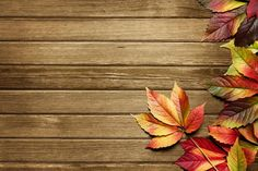 Fall Backgrounds | autumn background wallpaper are free hd wallpapers those…