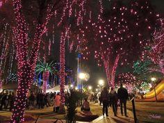Glendale Glitters - Glendale AZ