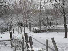 Snowy Farm Road